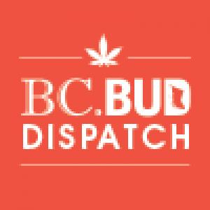 bcbuddispatch.com